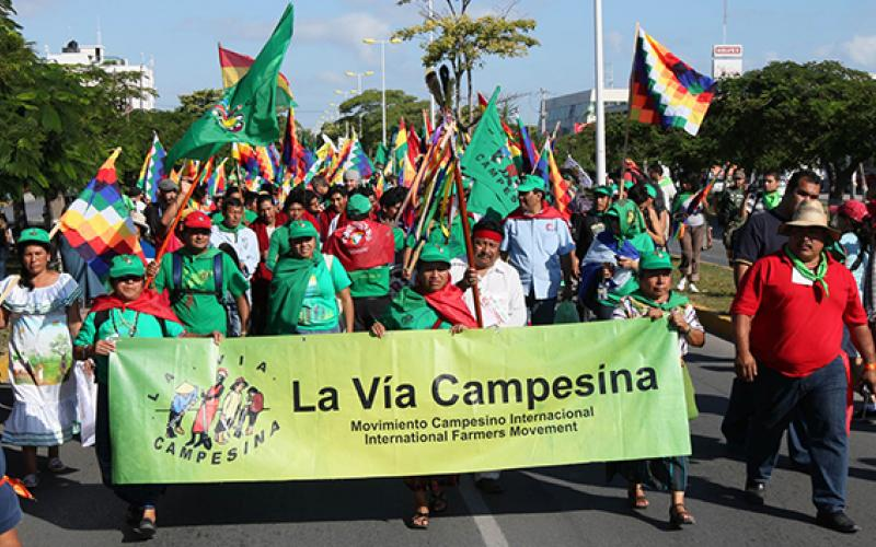 Peasants will be able to approach courts using the provisions of the declaration if it is adopted. UN Human Rights Council adopts landmark declaration of peasants' rights