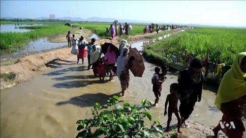 Rohingya_refugees_entering_Bangladesh