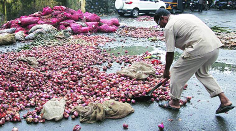 Onion farmers in India stare at crisis amid fluctuating price cycles