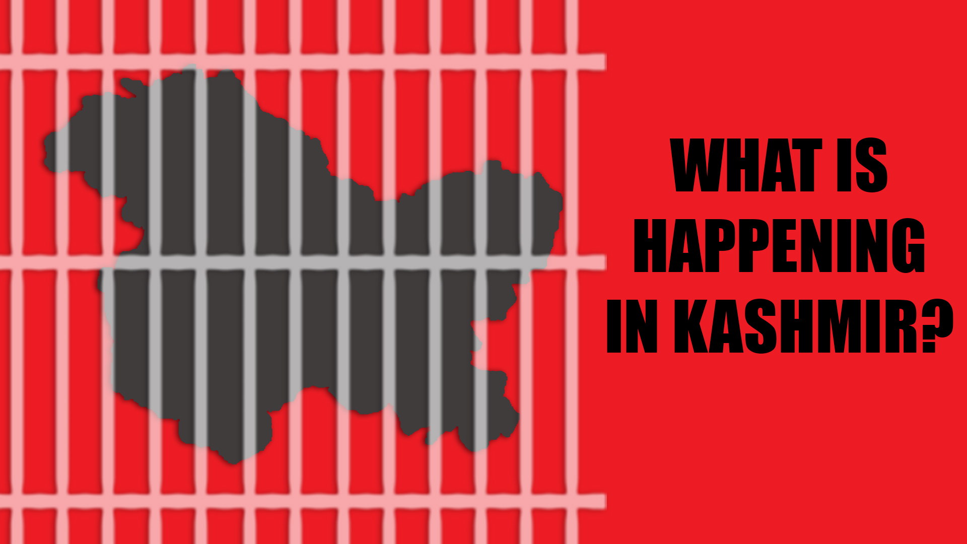 Kashmir_What is happening_60 days of siege