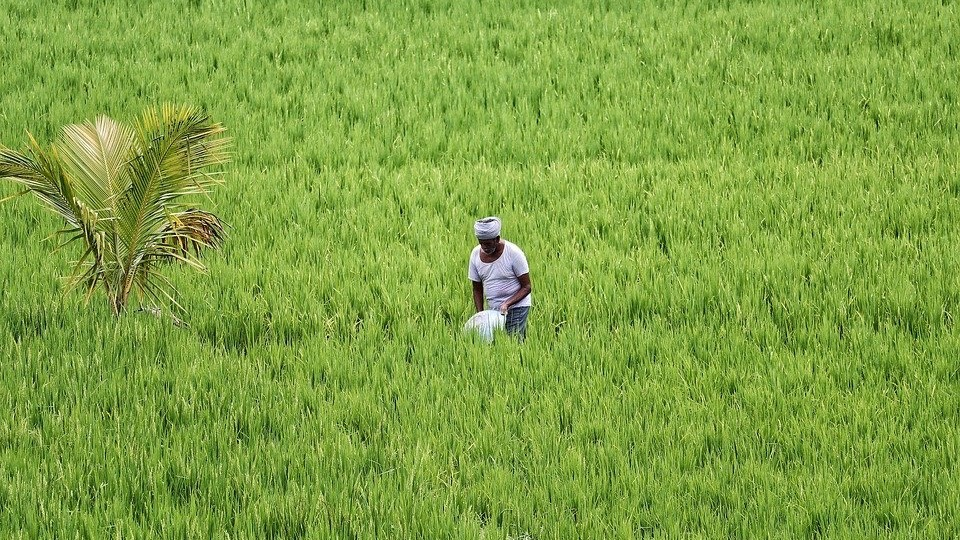 Agricultural Workers in India