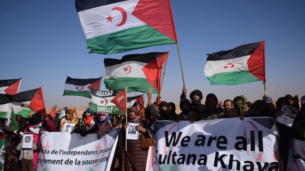 Morocco's violations in Western Sahara