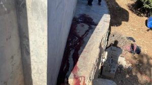 Israeli forces kill Palestinians
